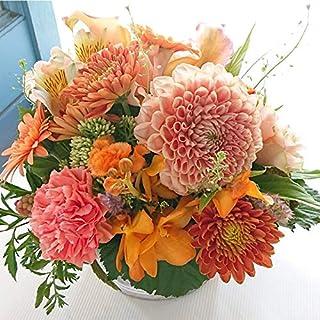 〔MaisonFleurie二子玉川本店〕フラワーアレンジメントギフト Mサイズ ラウンド オレンジ系 敬老の日 お誕生日 御祝 結婚祝い 祝開店 祝開業