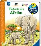 Tiere in Afrika (Wieso? Weshalb? Warum? junior, Band 50) - Daniela Prusse