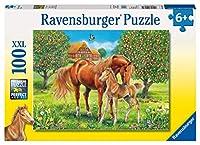 100ピース ジグソーパズル 野原の馬 Pferdeglück auf der Wiese (49 x 36 cm)