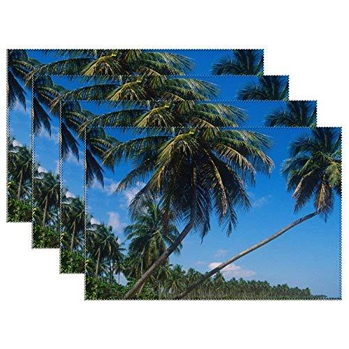 Juego de 4 manteles Individuales Puerto Rico Isla Verde Palmeras Tapetes de Lona para Mesa Manteles Individuales de Tela Lavable para decoración de Mesa de Comedor de Cocina 12 x 18 Pulgadas
