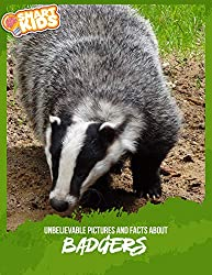 Image: Unbelievable Pictures and Facts About Badgers | Kindle Edition | by Olivia Greenwood (Author). Publication Date: October 4, 2019