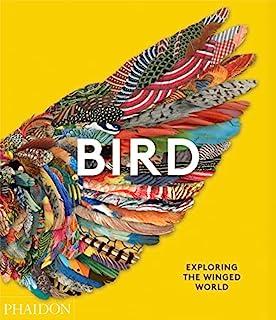 Bird: Exploring the Winged World