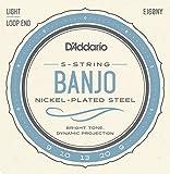 D'Addario EJ60NY Light 9-20 Banjo Strings - NY Steel