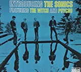 Songtexte von The Sonics - Introducing the Sonics