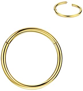 FANSING 316l Surgical Steel Hinged Nose Rings Hoop 20G 18G 16G 14G 12G 10G 8G 6G, Diameter 5mm to 22mm, Gold - Rose Gold -...