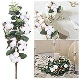 DWANCE 2PCS 45cm Getrocknete Baumwolle Natürliche Trockenblumen Baumwollzweig Deko Kunstpflanzen Eukalyptus Plastikpflanzen Deko für Tischdeko Vase Hochzeit Zimmer Winter Dekoration - 5