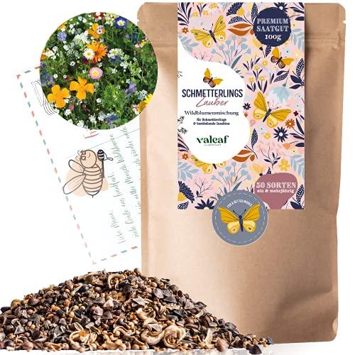 Schmetterlingswiese I 100 g I Blumenmischung für 100 m² I Blumenwiese Samen mehrjährig und einjährig I Wildblumensamen für Schmetterlinge und Bienen I Wiesenblumen Samen ideal als Bienenwiese