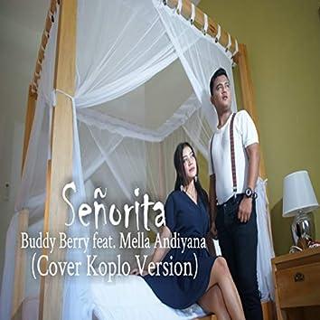 Señorita (Cover Koplo Version)