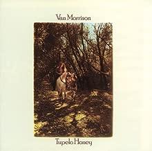Best van morrison tupelo honey vinyl Reviews