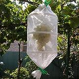 ASOCOA - 5 Bolsas Salva racimos de UVA o Frutos. Protector Ecológico. Transpirable. Reutilizable.