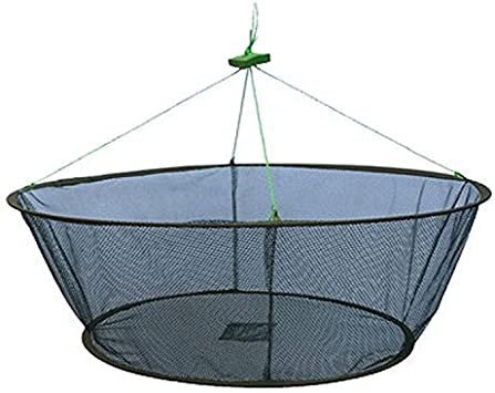 BESPORTBLE Collapsible Mesh Fishing Cage Round Fishing Net Portable Durable Fishing Trap Network Basket for Keeping Lures Crab Crayfish Fishes