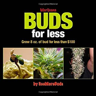 Best marijuana buds for less Reviews