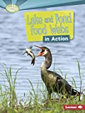 Lake and Pond Food Webs in Action (Searchlight Books ™ ― What Is a Food Web?)