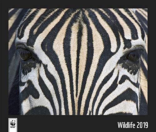 WWF Wildlife 2019: Wandkalender WWF