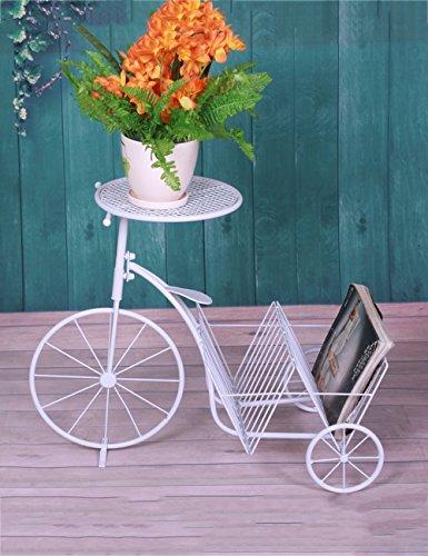 Blumenständer Plante Théâtre White European Style Iron Flower Racks Vélo Bonsaï Cadre pour Le Salon Cadeau idéal Jardinier