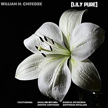 (Lily Pure)