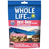 Whole Life Pet Healthy Dog Treats, Human-Grade Salmon, Protein Rich for Training, Picky Eaters, Digestion, Weight Control, Made in the USA, 2 Ounce