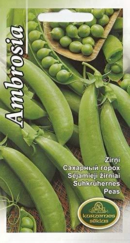 Portal Cool Gemüsesamen Zuckererbsen Erbsen Ambrosia EU-Standard Pictorial Packet Uk