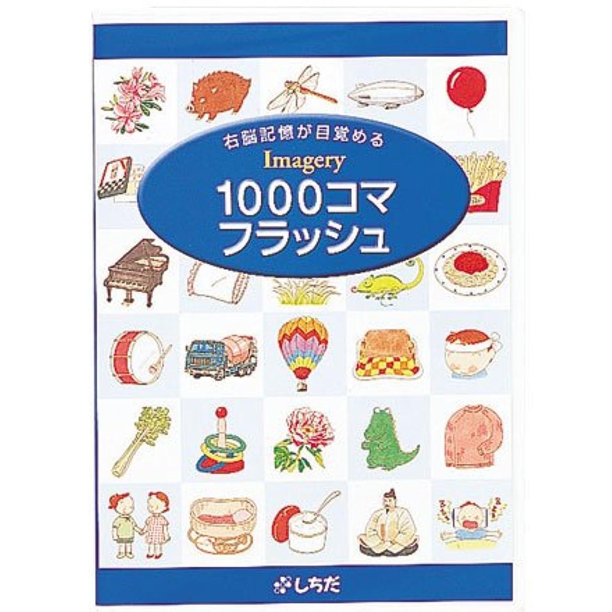 試験シアー魔術師七田式(しちだ)教材 1000コマフラッシュ DVD