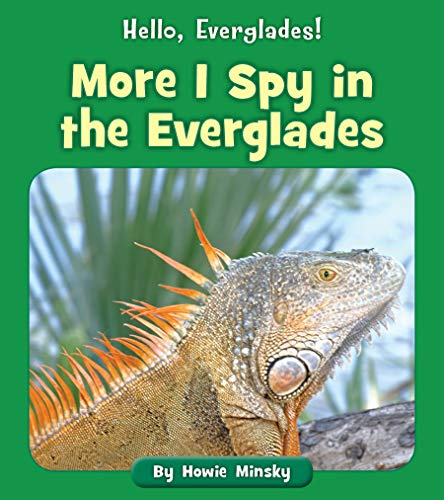 More I Spy in the Everglades (Hello, Everglades!) (English Edition)