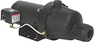 dayton jet pump
