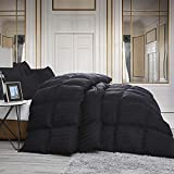 Luxurious All-Season Goose Down Comforter Queen Size Duvet Insert, Exquisite Black Stripe Design, 1200 Thread Count 100% Egyptian Cotton Down Proof Fabric, 55 oz Fill Weight