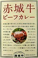 鳥山畜産 赤城牛ビーフカレー(赤城牛肉入り) 200g (箱入) 【全国こだわりご当地カレー】