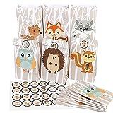 nikima Schönes für Kinder 12 Papiertüten Waldtiere | H 23cm - 8 x 12cm | inkl. 12 Aufkleber | Geschenktüte Kindergeburtstag Mitgebsel Gastgeschenk