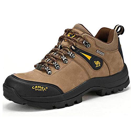 Camel Zapatos de Senderismo para Hombre al Aire Libre Trekking Low-Top Profesional...