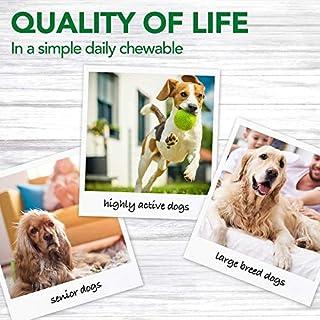 أفضل الفيتامينات والأكسيجين الحرة الكلب البيطري الأسبرين للبيع