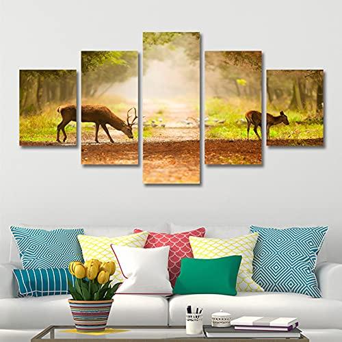 lienzo decorativo para pared Arte de la pared 5 piezas de lienzo pintura impresiones naturaleza camino de ciervos Casa Pósteres Decoración de pared Regalo para sala de estar Dormitorio Baño Co