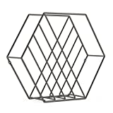 A sculptural magazine rack and organizer Made of metal wire with a titanium finish Can hold 10 magazines STAND OR MOUNT: This product can sit freestanding or be mounted to the wall; comes with mounting hardware and measures 15 x 13 x 3¾ inches Comple...