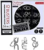 RVM Toys 16 in 1 Metal Puzzles Brain Teaser Challenge Set IQ Busters Intellectual Toy for Kids and Adult