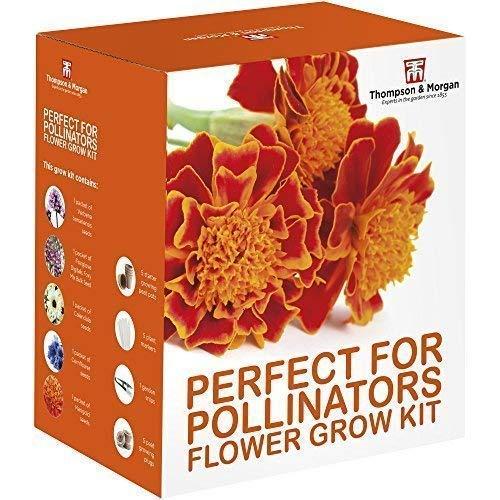 Thompson & Morgan Grow Kits Cadeau Boîtes - Parfait pour Pollinators