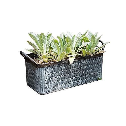 CJSWT Maceta para decoración de jardín, bañera de Metal versátil para Plantas, contenedor de jardín con Asas, bañera para Bebidas para Bodas y Fiestas en Interiores o Exteriores