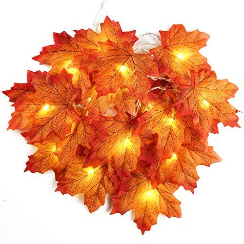 2 m 20 LED de otoño Artificial Arce Hojas de Alambre de Cuerda Luces de caída Guirnalda operado por batería decoración para Navidad Halloween Fiesta de Boda Vacaciones casa jardín Dormitorio