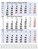 3-Monats-Planer Comfort Blau 2020: 3-Monatskalender groß I Wandplaner / Bürokalender mit Datumsschieber, Vor-und Nachmonat und Jahresübersicht I 30 x 39 cm