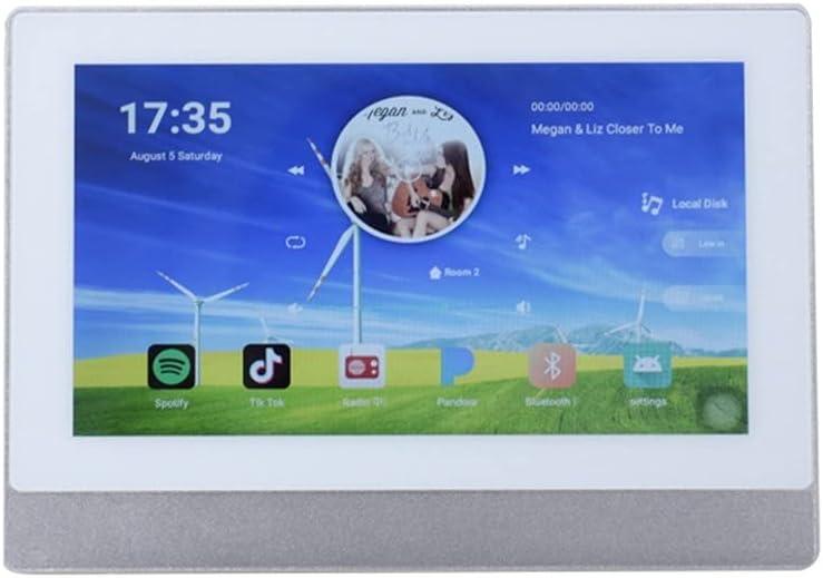 CDQYA Virginia Beach Mall WiFi Wall Amplifier famous Bluetooth Audi Theater Home Amplifiers