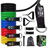 TGVi's Resistance Bands Set, Workout Resistance Bands for Men/Women, Portable Home Gym Accessories, Stackable Up to 100 lbs, Perfect for Physical Therapy, Strength Training, Muscle Toning