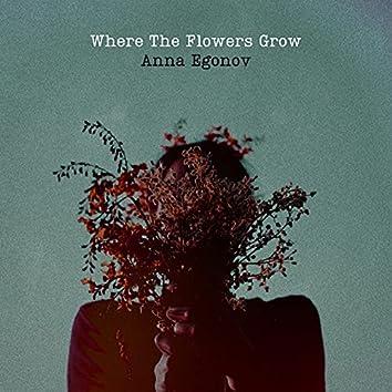 Where The Flowers Grow