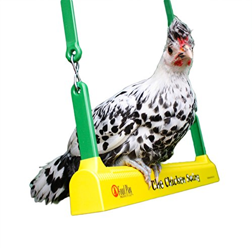 Fowl Play Products, The Chicken Swing, Chicken Toy ,13100, Country Corn, 1 , Yellow Green & Brown