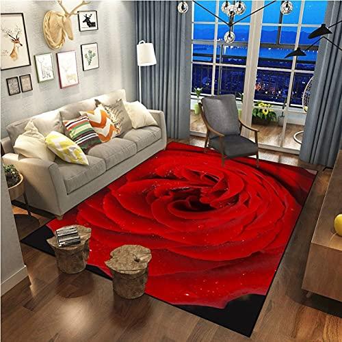 Alfombra Moderna Y Simple De La Serie Red Rose Antideslizante Impermeable Y A Prueba De Aceite Adecuada para El Pasillo De La Sala De Estar del Dormitorio