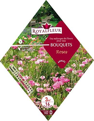 Royalfleur PFRK08343 Graines de Mélange de Fleurs pour mes Bouquet Rose 3 m²