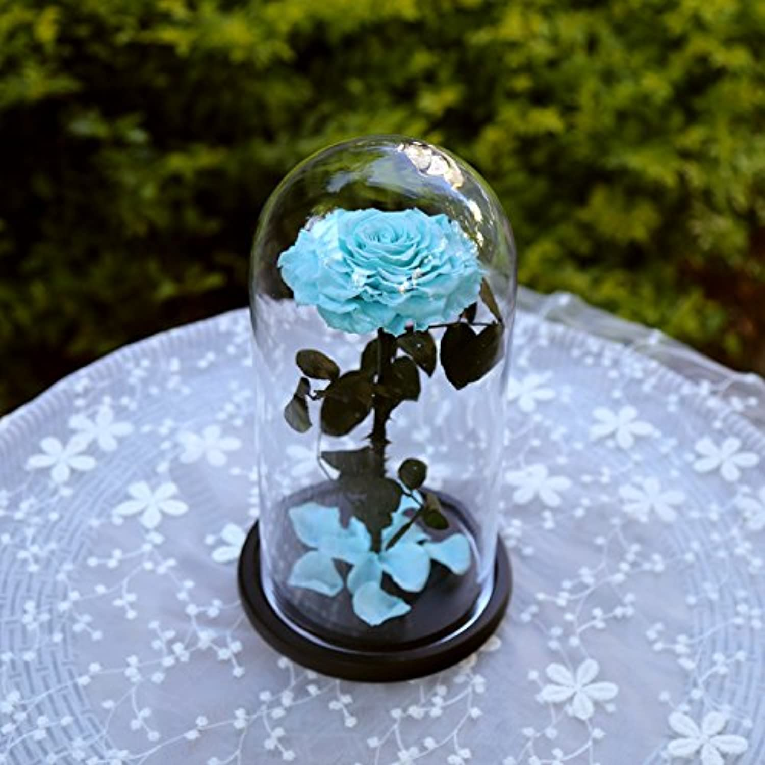 DeFancy Preserved Real pink with Fallen Petals in Glass Cloche Dome with Black Wood Base-Best Gift Jar