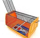 Trixie - Caja de transporte para pájaros, hámsteres, animales pequeños (30 x 18 x 20 cm), color naranja