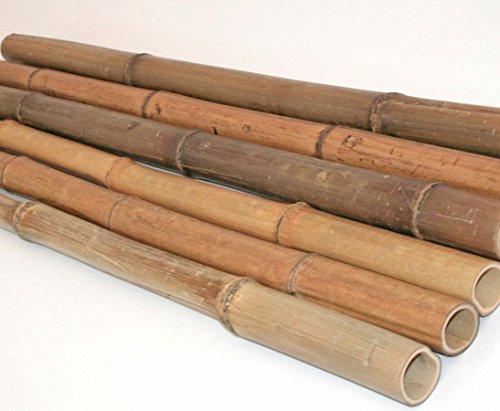 10er Set Bambusrohr 300cm mit 2,0 bis 3,5cm Natur, gelb braun getrocknet - Bambus Rohr Bambus Latten farbige Bambusrohre Bamboo Bambus Halbschale Bambusstangen Bambusstab Rohre aus Bambus