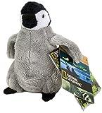 50541 National Geographic Penguin - Peluche de pingüino (14 cm, lavable hasta 30 grados)