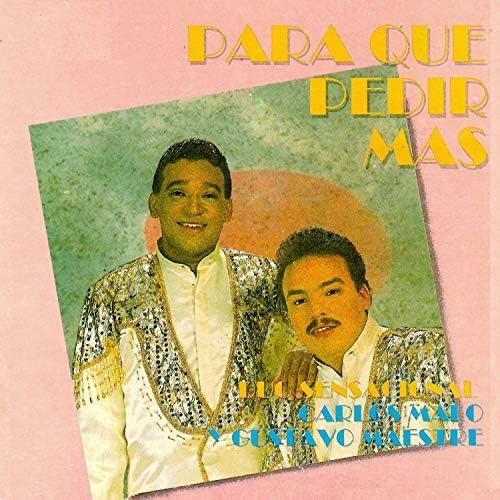Duo Sensacional Carlos Malo Y Gustavo Maestre