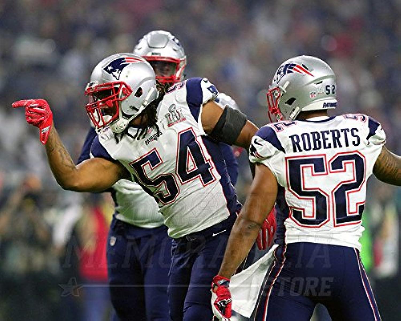 Dont'a Hightower New England Patriots Super Bowl LI 20x24 photo 4898