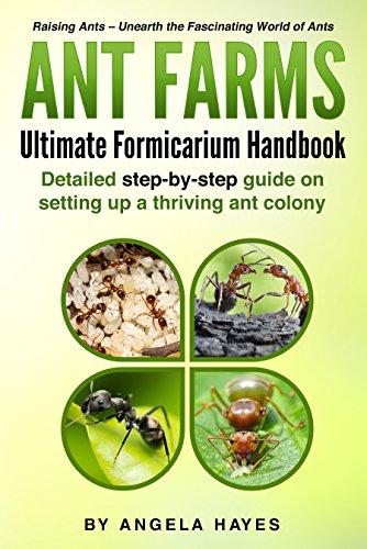Ant Farms: Ultimate Formicarium Handbook (English Edition)